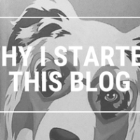 WHY I STARTED THIS BLOG