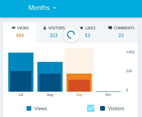 Blog Traffic - Wandering Nobody Travel Blog
